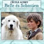 Belle és Sebastien